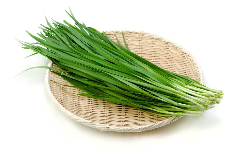 にら,ニラ,韮の値段 価格の相場と旬や栄養成分