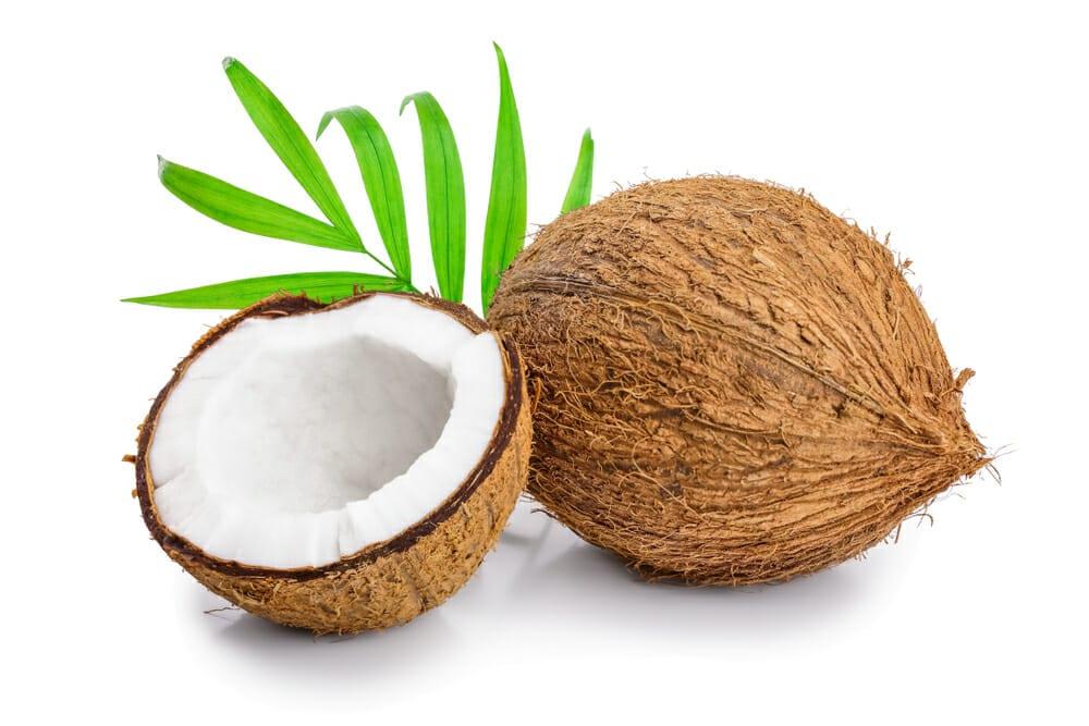 ココナッツ,ココヤシ,古古椰子の値段 価格の相場と旬や栄養成分