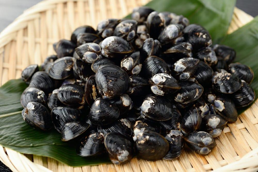 しじみ,シジミ,蜆の値段 価格の相場と旬や栄養成分