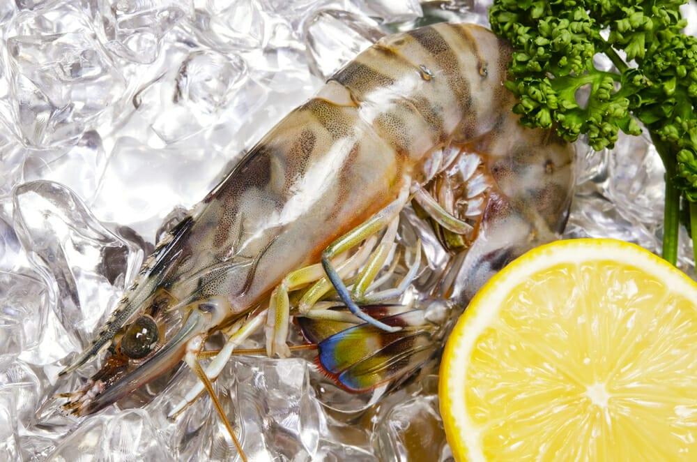 くるまえび,クルマエビ,車蝦の値段 価格の相場と旬や栄養成分