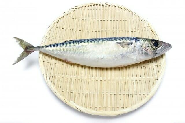 さば,サバ,鯖の値段 価格の相場と旬や栄養成分